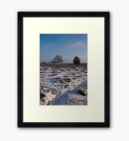 Snow landscape Framed Print