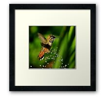 ALL TIME POPULAR..TINY BUBBLES ~...I Framed Print