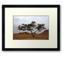 double tree Framed Print