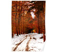 Autumnal Winter Poster
