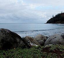 Ball Bay at Norfolk Island by sandysartstudio