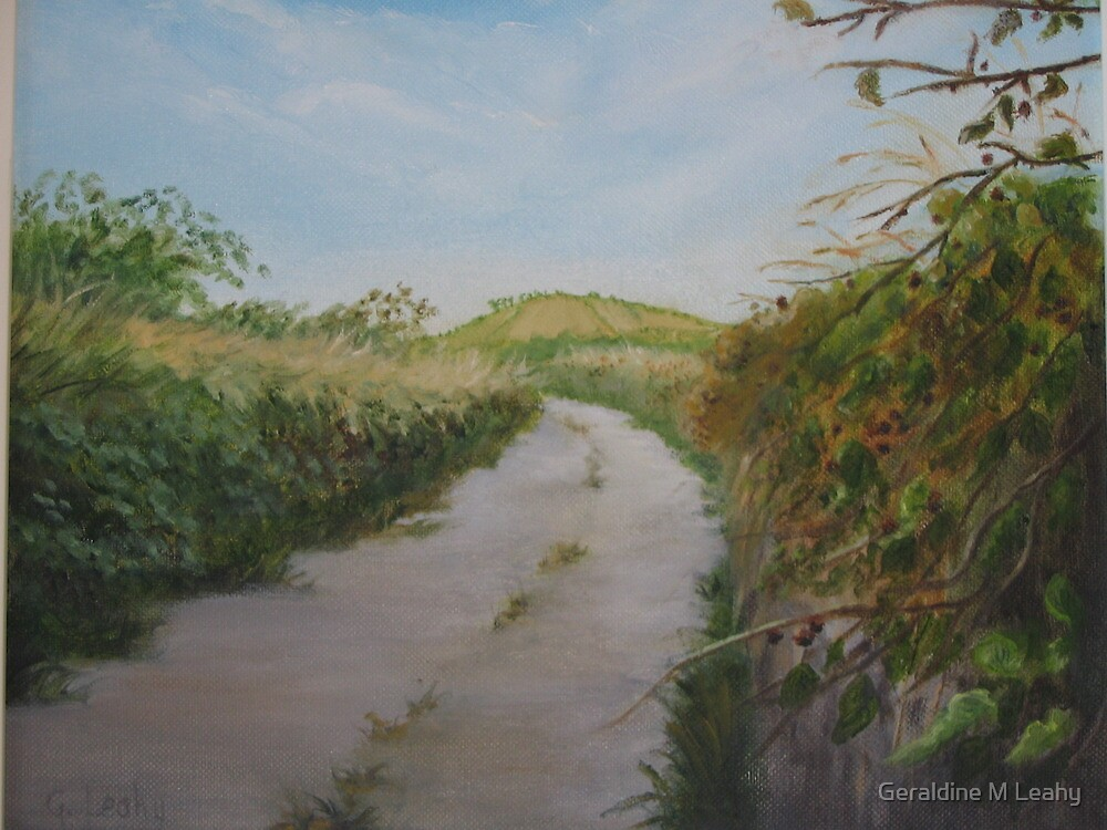 Country Lane in West Cork by Geraldine M Leahy