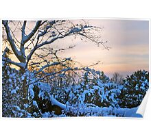 Snowy sunset Poster