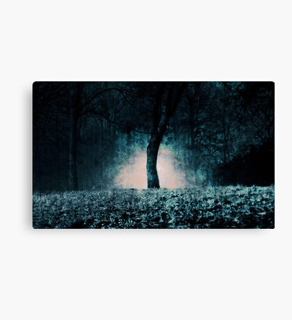 In the fog which surrounded the trees... Canvas Print