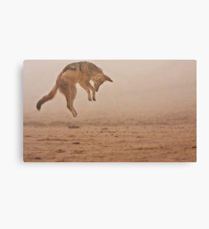 Flying in fog Canvas Print