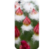Cactus buds iPhone Case/Skin