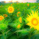 """""""Paleate Of Colors"""" - impressionistic sunflowers by ArtThatSmiles"""