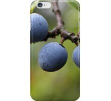 Blackthorn Fruits iPhone Case/Skin