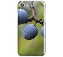 Blackthorn Fruits iPhone Case/Skin