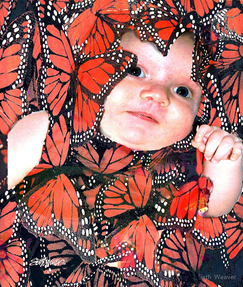 Butterfly Baby by Seth  Weaver