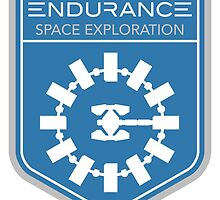 Endurance Mission Patch by quarksbar