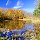 Fall Colours At The Pond by Moodycamera Photography
