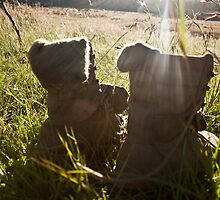 Sunshine boots by Ruben D. Mascaro
