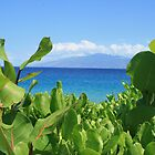 maui sea view by vernonite