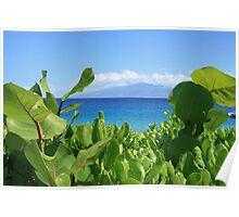 maui sea view Poster