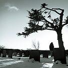 Cemetery by Nando MacHado