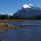 majestic rocky mountains by vernonite