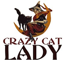 Crazy Cat Lady vintage halloween Photographic Print