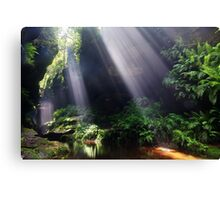 Grand Canyon, Blue Mountains, Australia Canvas Print