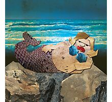 BEHOLD ... THE UGLY MERMAID Photographic Print