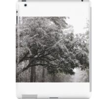 Snow in the Trees iPad Case/Skin