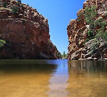 Ellery Creek water hole, West McDonnell Ranges, Northern Territory by burrster
