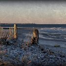 The Beach, After the Storm by Monica M. Scanlan