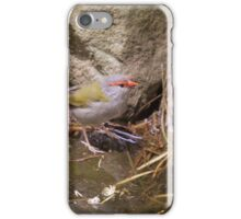 Red Browned Firetail iPhone Case/Skin