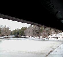 Bridge Troll by linmarie