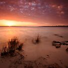 Sunset over Swan by laurette