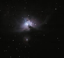 Orion Nebula by Atmos