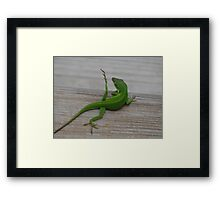 """Yoga Lizard"" Framed Print"