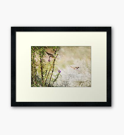 Hummingbird Garden Textured Framed Print