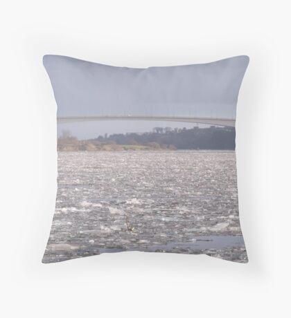 Crunch Throw Pillow