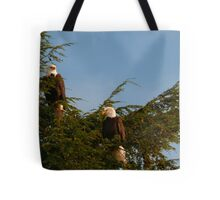 Two Bald Eagles  Tote Bag