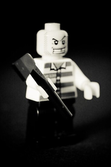 Leave my Lego alone! by Melissa James