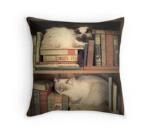 Library Cats Throw Pillow
