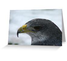 a eagle posing Greeting Card