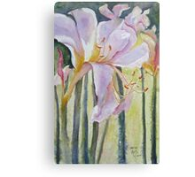 Resurrection Lilies Canvas Print