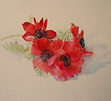 Anemones by Beatrice Cloake