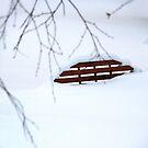 White silence. IV by Bluesrose