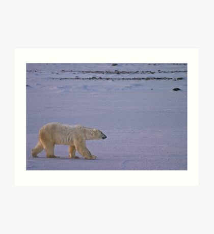 Bound for ice Art Print