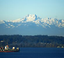Olympic Mountains by Loisb