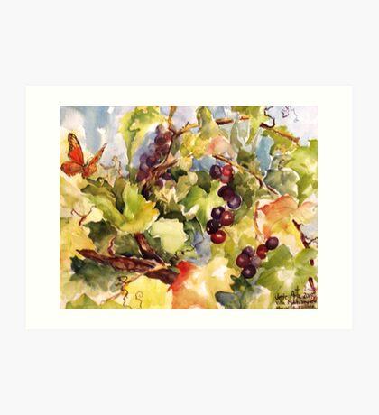 Monarch in the Vineyard Art Print