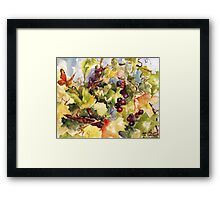 Monarch in the Vineyard Framed Print