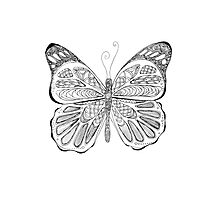 patterned butterfly ink drawing Photographic Print
