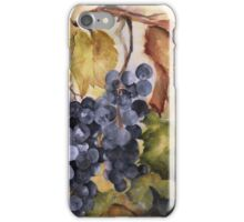 Villa Marie Vineyard iPhone Case/Skin
