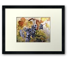 Villa Marie Vineyard Framed Print