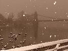 One snowy day by Themis