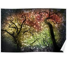 Autumn Tree Canopy Poster